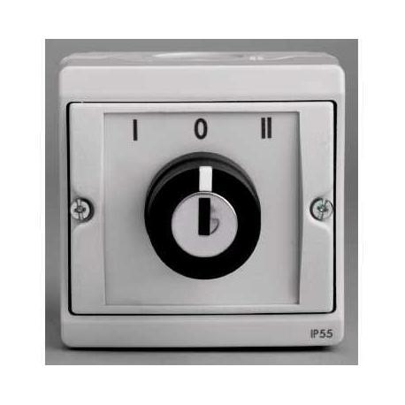 Interrupteur à clé 3 positions Mureva - Gris - En saillie - IK07 IP55