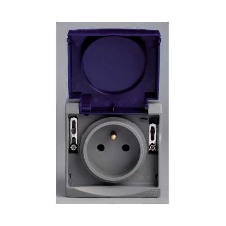 Prise de courant 2P+T NF Mureva - Gris - En saillie - IK08 IP55