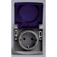 Prise de courant 2P+T VDE Mureva - Gris/bleu - En saillie - IK08 IP55