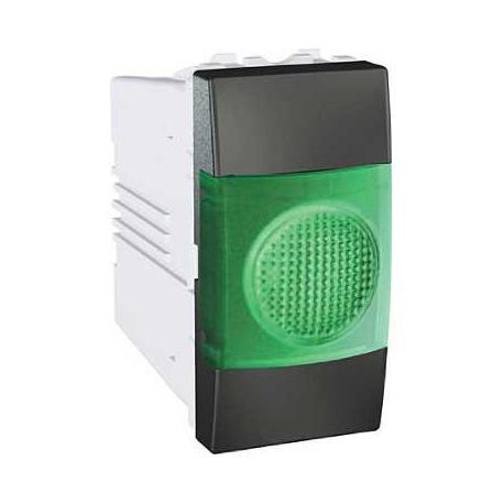 Voyant lumineux vert Unica - Graphite - 220 V CA