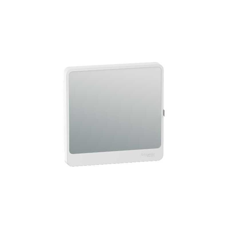 Schneider r9h13421m porte touch miroir pour coffret for Miroir pour porte